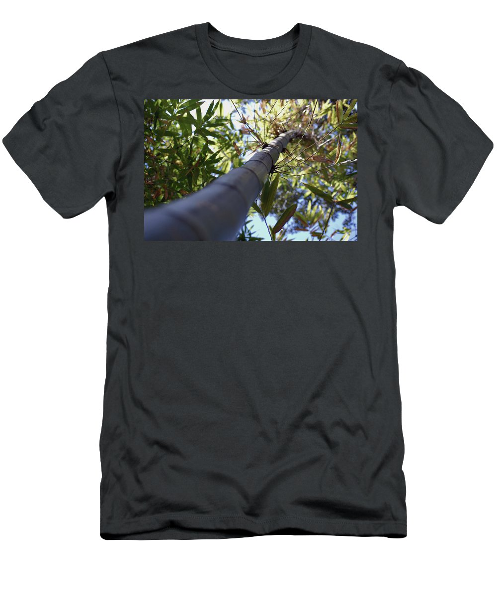 Bamboo Men's T-Shirt (Athletic Fit) featuring the photograph Bamboo by Robert Meanor