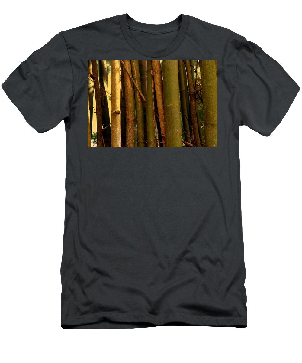 Bamboo T-Shirt featuring the photograph Bambusa vulgaris by Susanne Van Hulst