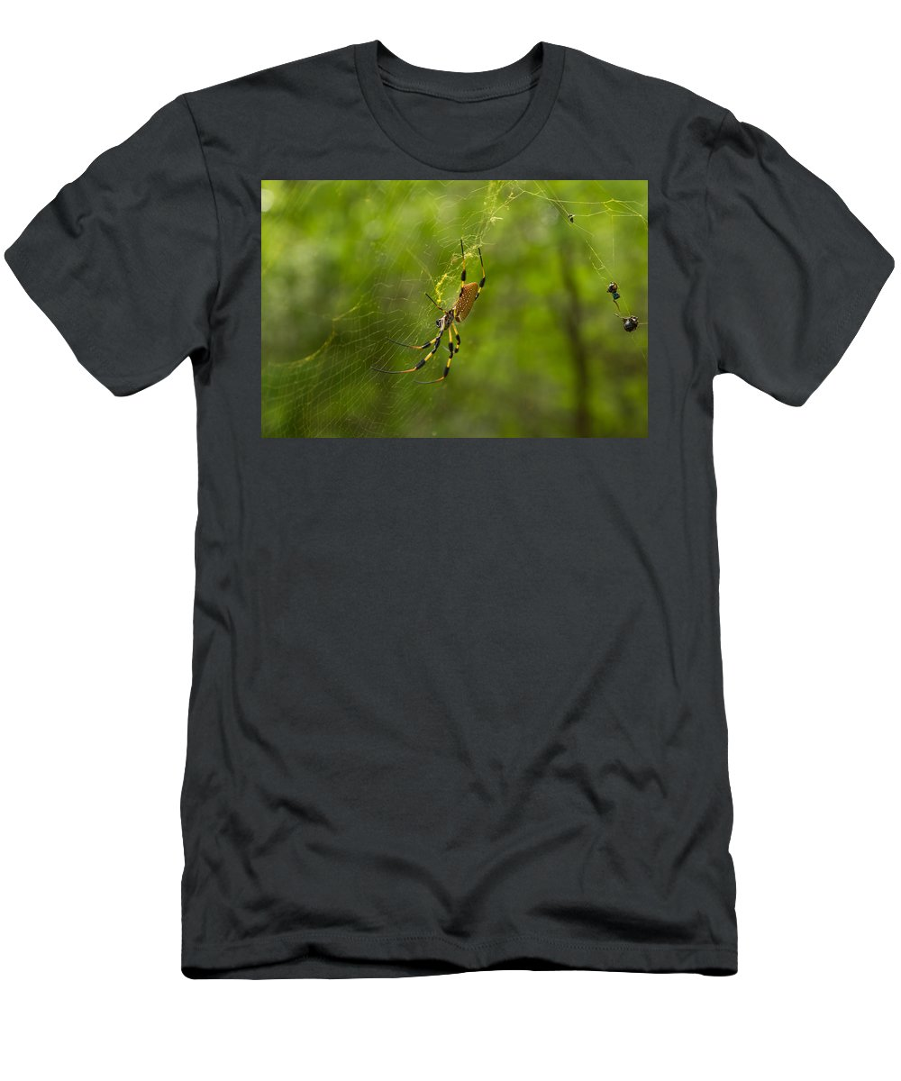 Spider Men's T-Shirt (Athletic Fit) featuring the photograph Banana Spider by Christopher L Thomley