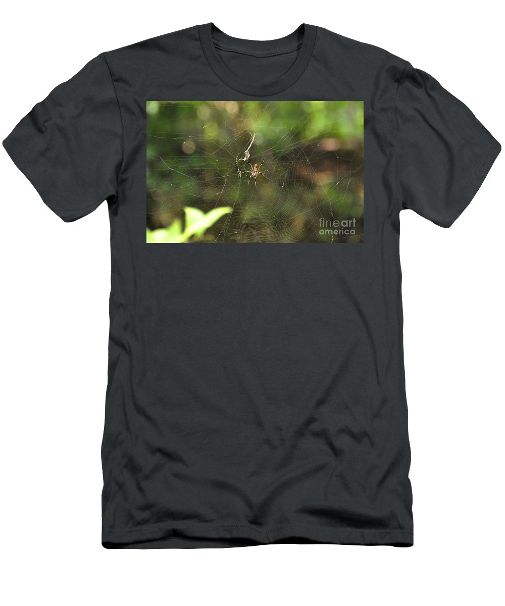 Spider Men's T-Shirt (Athletic Fit) featuring the photograph Banana Spider In Web by John Black