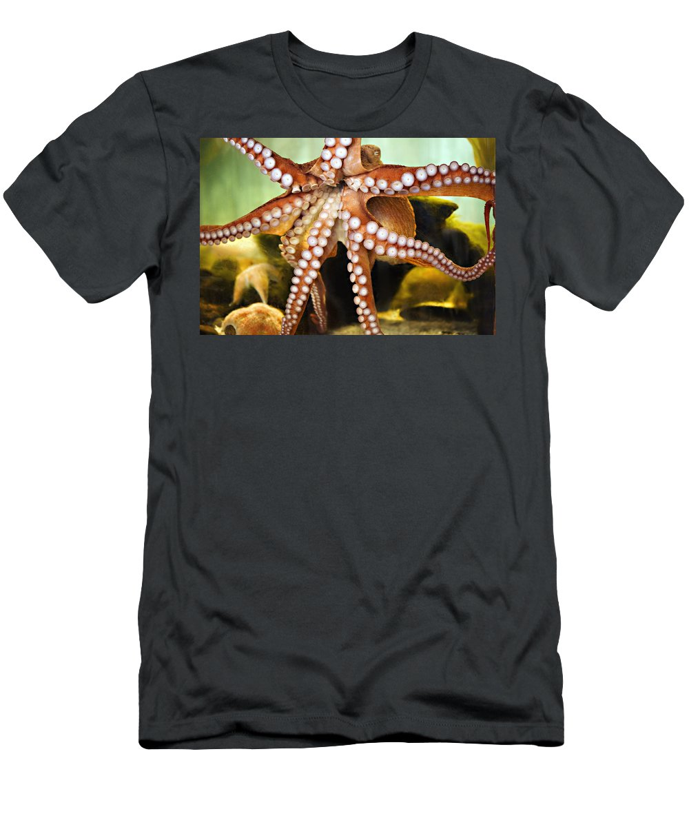 Octopus Men's T-Shirt (Athletic Fit) featuring the photograph Beautiful Octopus by Marilyn Hunt