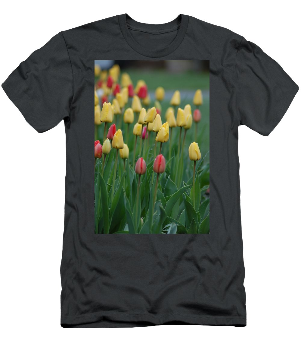 Tulips Men's T-Shirt (Athletic Fit) featuring the photograph Beautiful Tulips by Donna Bentley