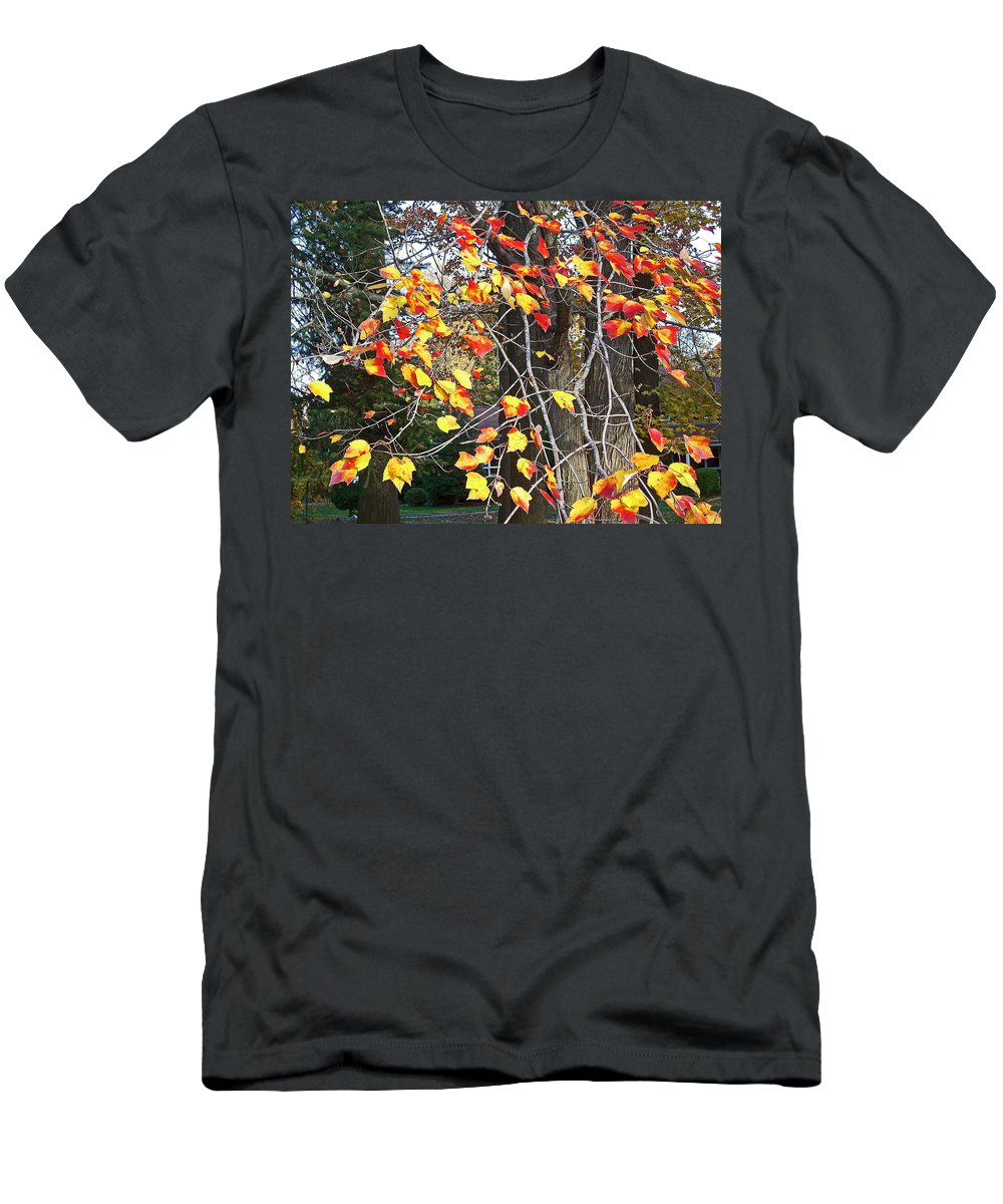 Fall Leaves Painting Men's T-Shirt (Athletic Fit) featuring the photograph Beauty Of Fall by Karin Dawn Kelshall- Best