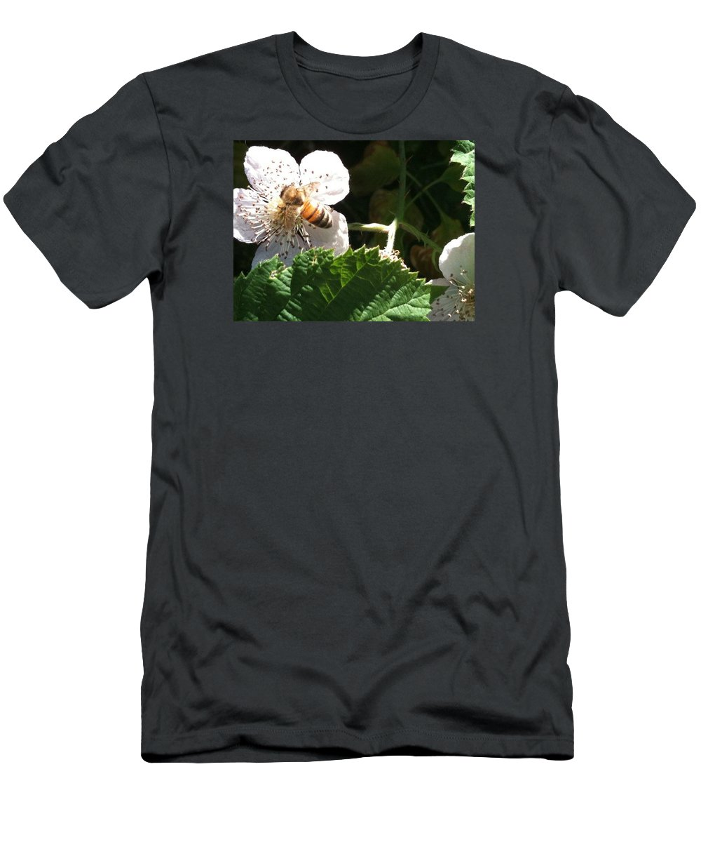 Bee Men's T-Shirt (Athletic Fit) featuring the photograph Bee On Blackberry Blossom by Helen Orth