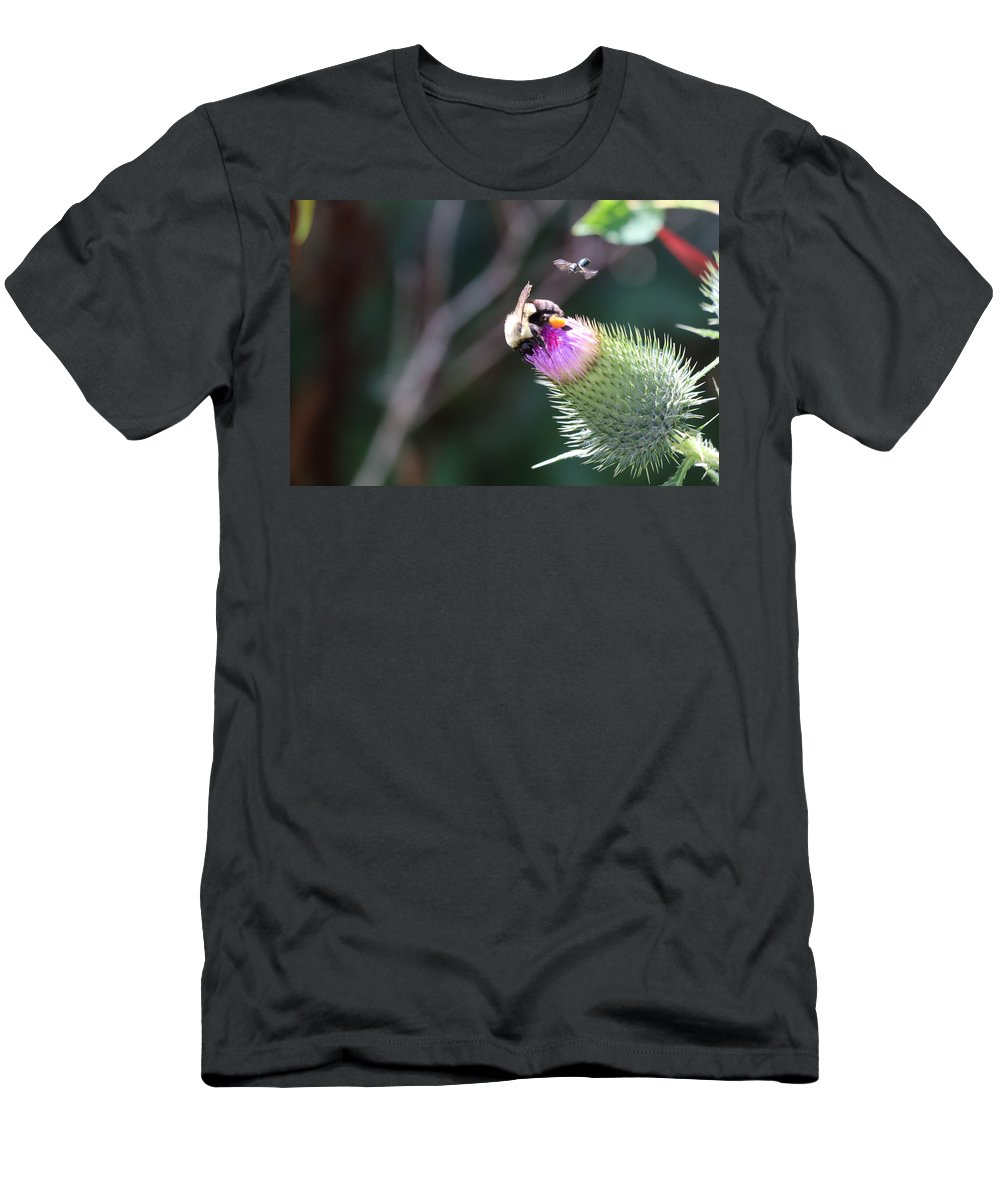 Nature Men's T-Shirt (Athletic Fit) featuring the photograph Bee Pollination by Maurio Francois