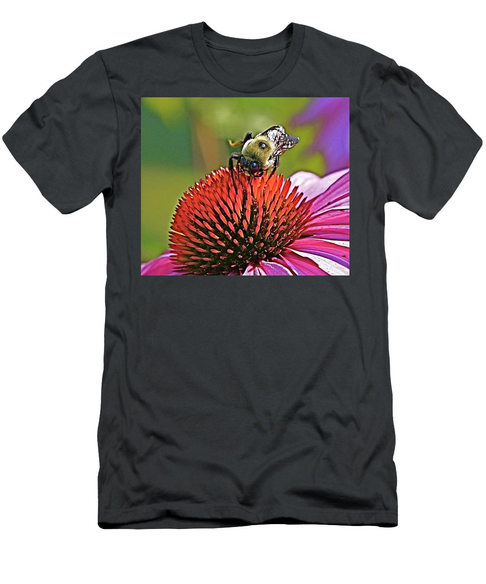 Bee Men's T-Shirt (Athletic Fit) featuring the photograph Beware by Robert Pearson