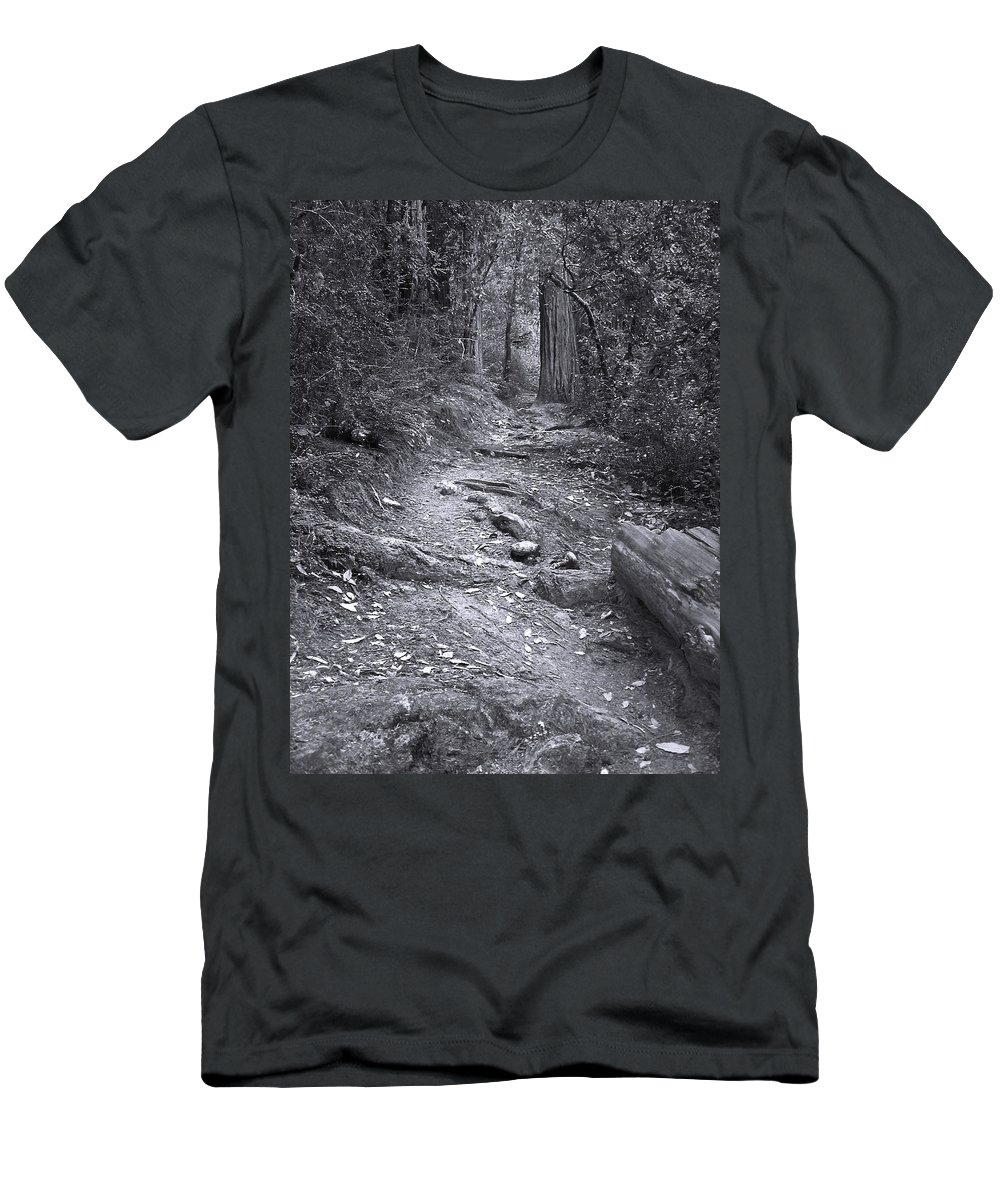 Landscape Men's T-Shirt (Athletic Fit) featuring the photograph Big Basin Redwoods Sp 1 by Karen W Meyer
