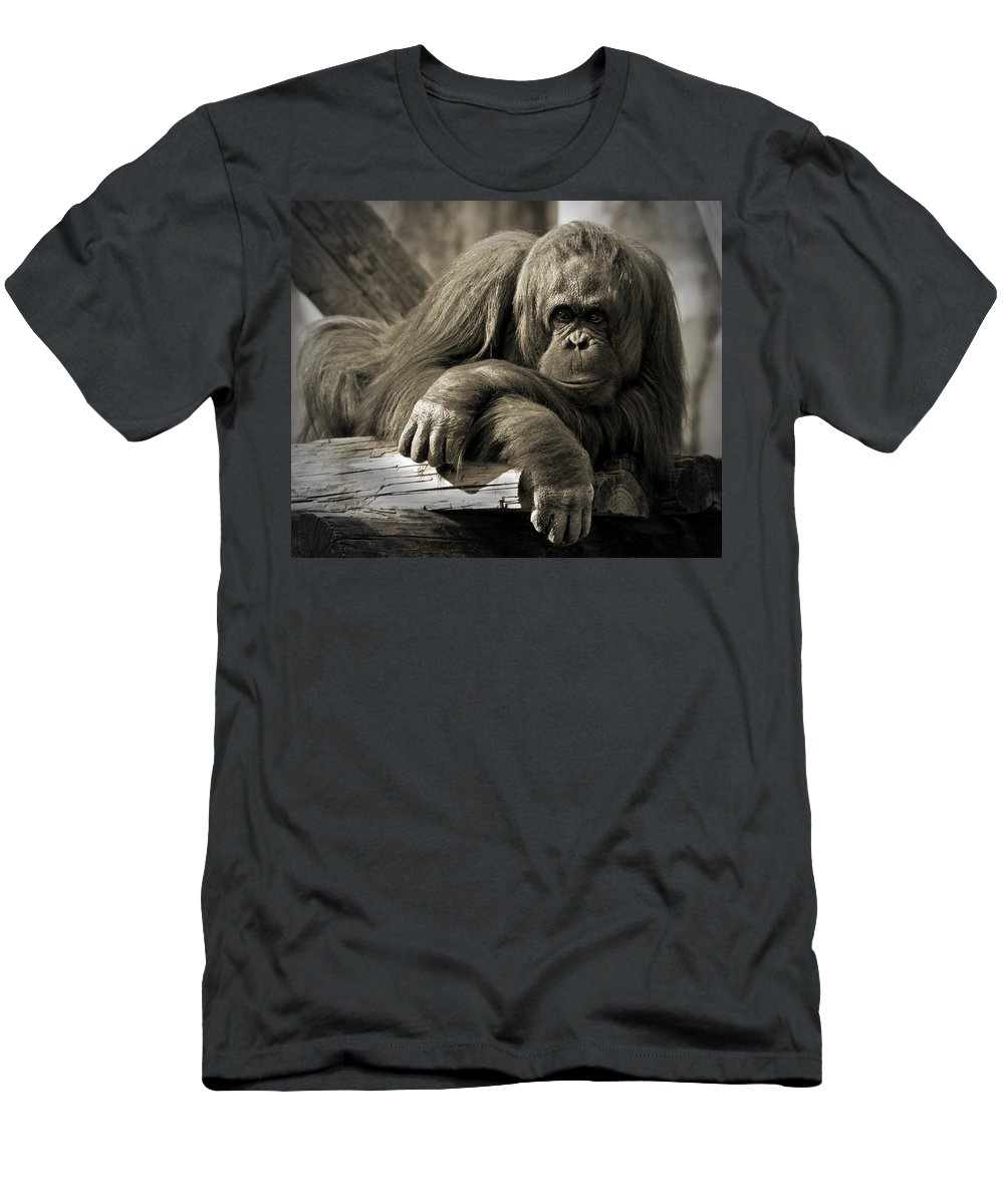 Orangutang Men's T-Shirt (Athletic Fit) featuring the photograph Big Hands II by Steven Sparks