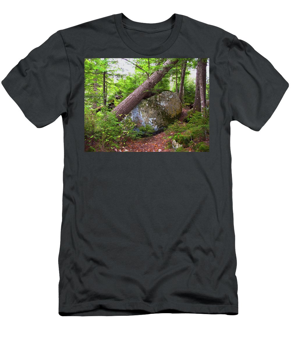 Trees Men's T-Shirt (Athletic Fit) featuring the photograph Big Rock by Denise Keegan Frawley