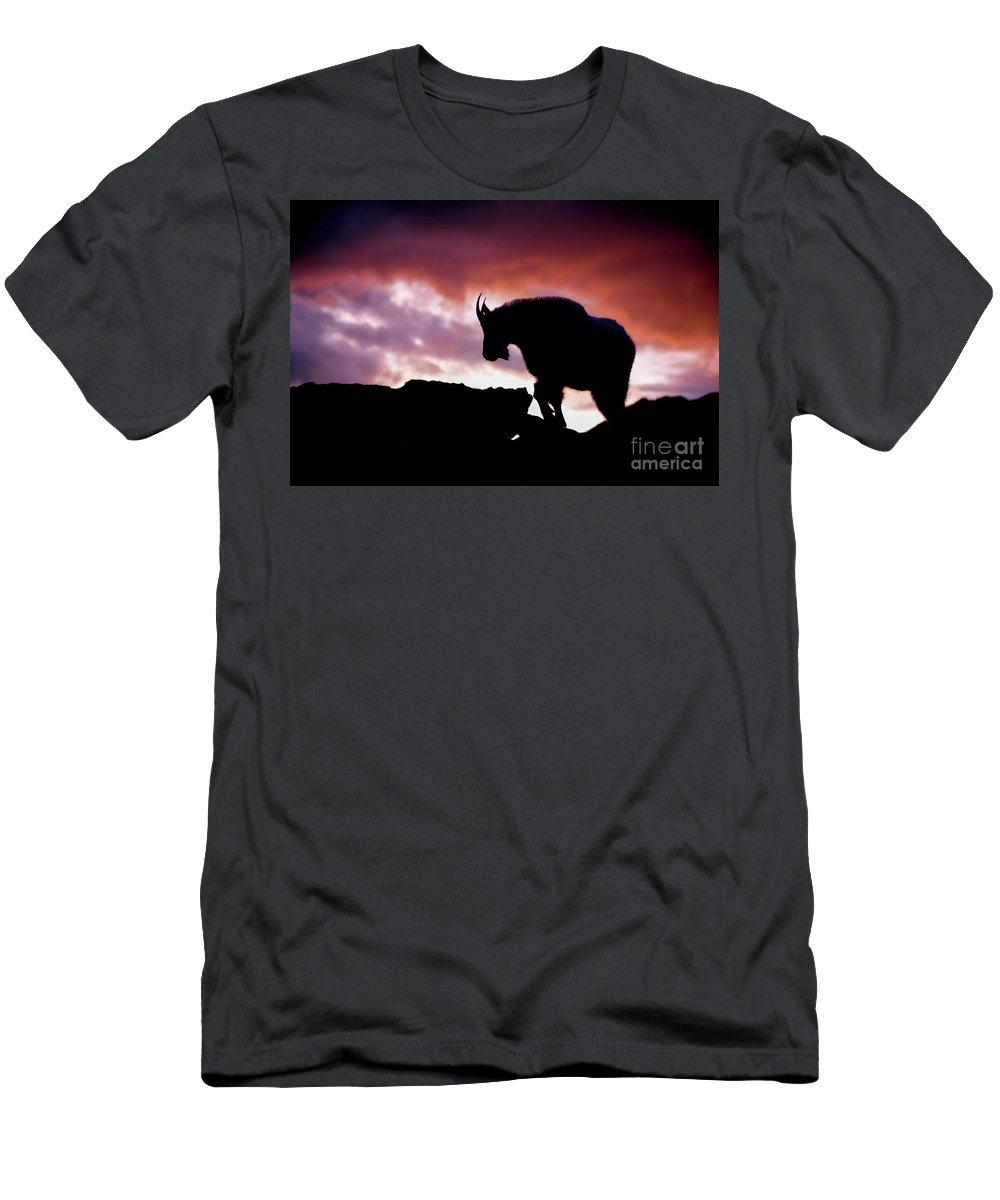 Silhouette Mountain Goat Photograph Men's T-Shirt (Athletic Fit) featuring the photograph Billie Boy by Jim Garrison