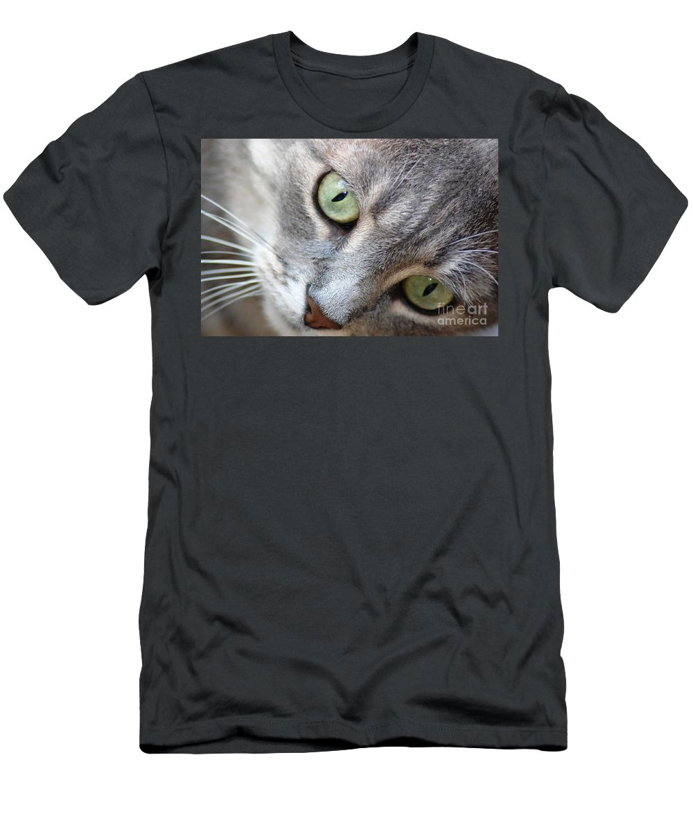 Cat Men's T-Shirt (Athletic Fit) featuring the photograph Binkster by Donna Bentley
