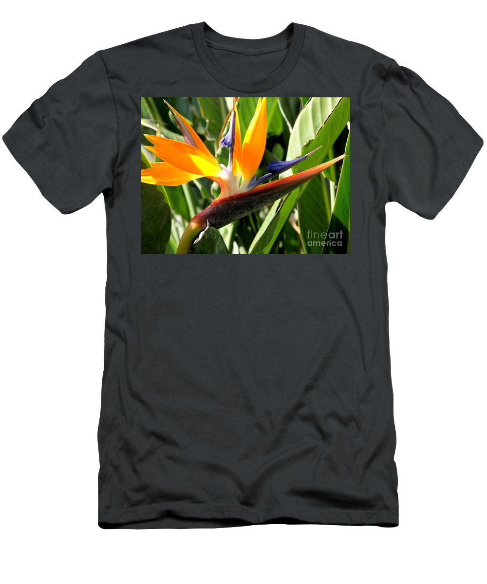 Bird Of Paradise Men's T-Shirt (Athletic Fit) featuring the photograph Bird Of Paradise by Mary Deal