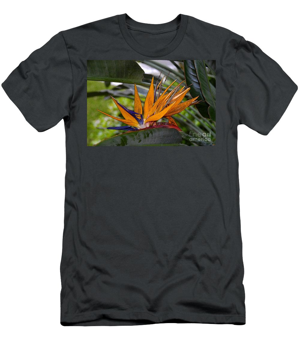 Art Men's T-Shirt (Athletic Fit) featuring the painting Bird Of Paradise Work Number Three by David Lee Thompson