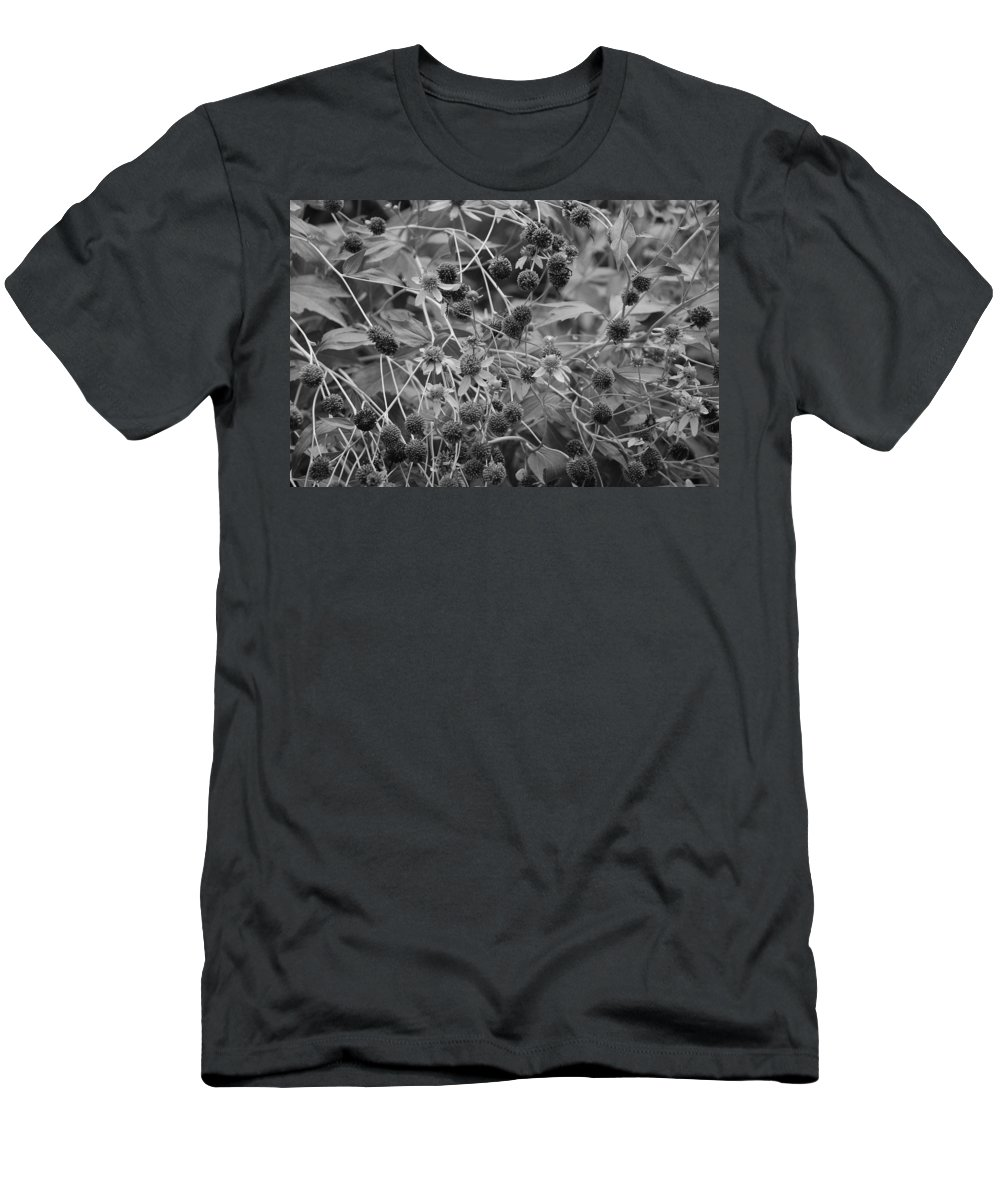 Black And White Men's T-Shirt (Athletic Fit) featuring the photograph Black And White Sun Flowers by Rob Hans