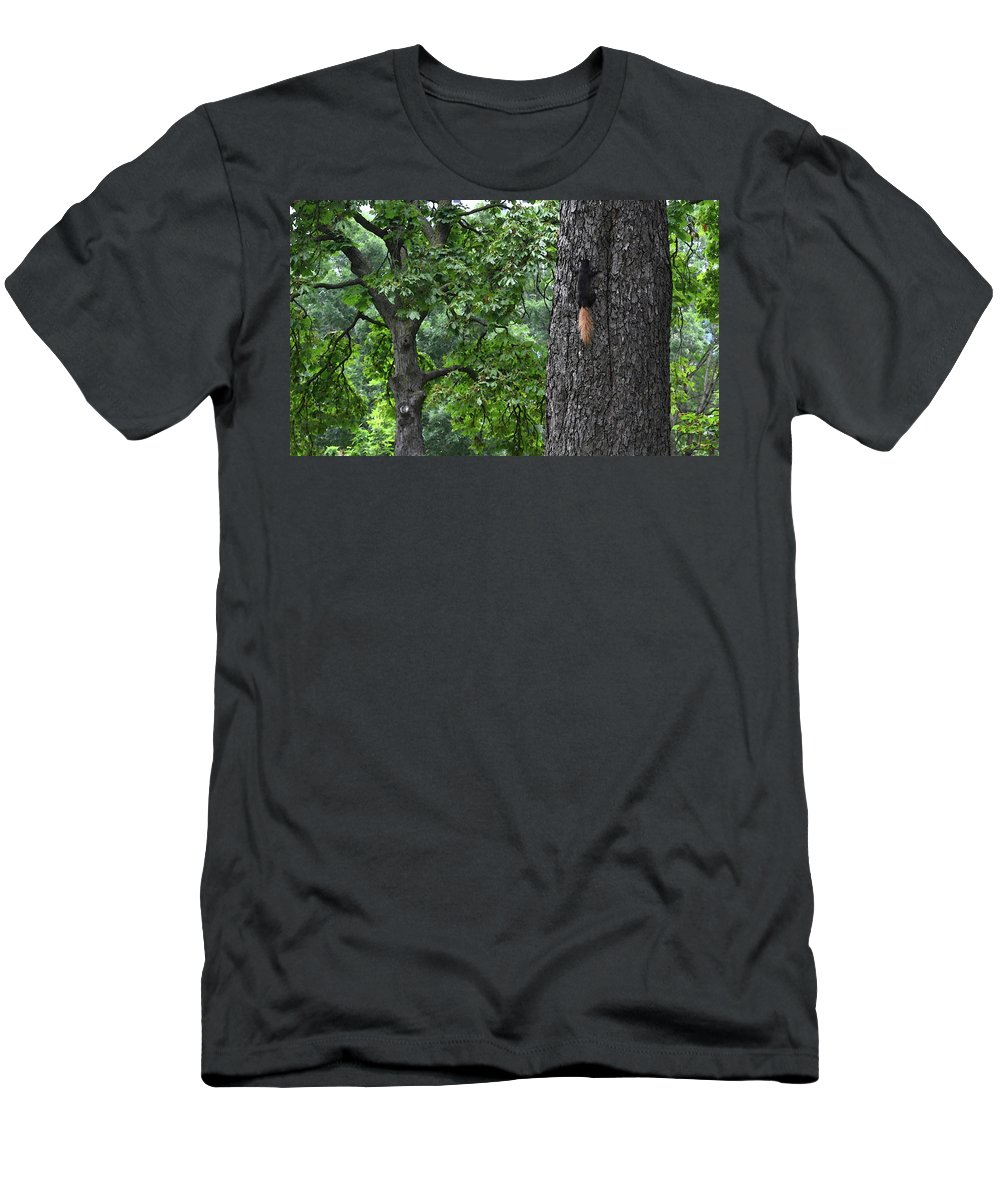 Abstract Men's T-Shirt (Athletic Fit) featuring the digital art Black Squirrel With Blond Tail by Lyle Crump