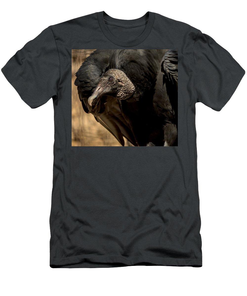 Black Vulture Men's T-Shirt (Athletic Fit) featuring the photograph Black Vulture 2 by David Pine