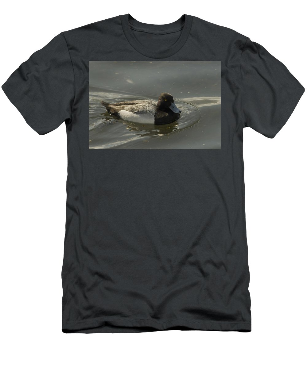 Diver Ducks Men's T-Shirt (Athletic Fit) featuring the photograph Blue Bill by Sara Stevenson