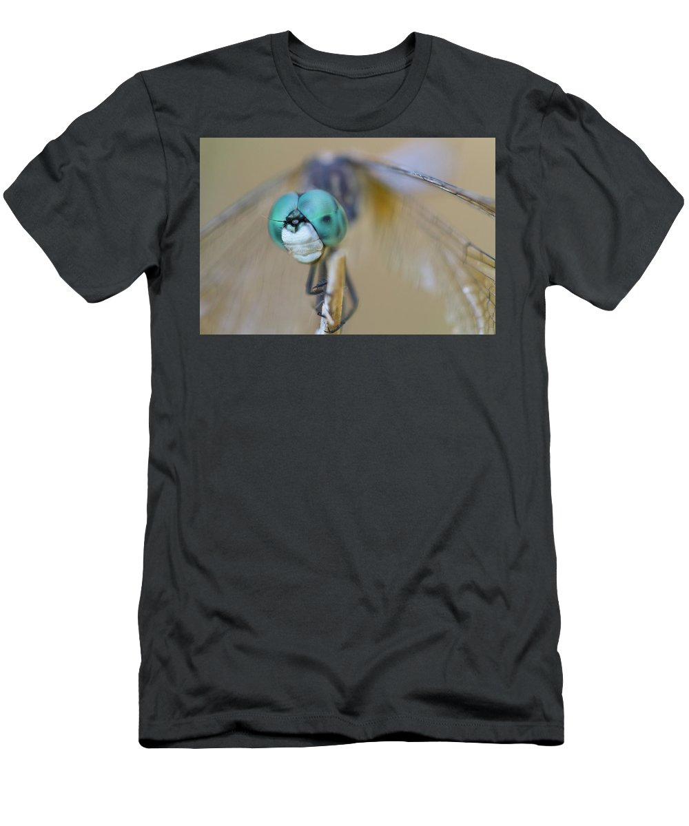 Dragonfly Men's T-Shirt (Athletic Fit) featuring the photograph Blue Dasher Dragonfly #1 by Paul Rebmann