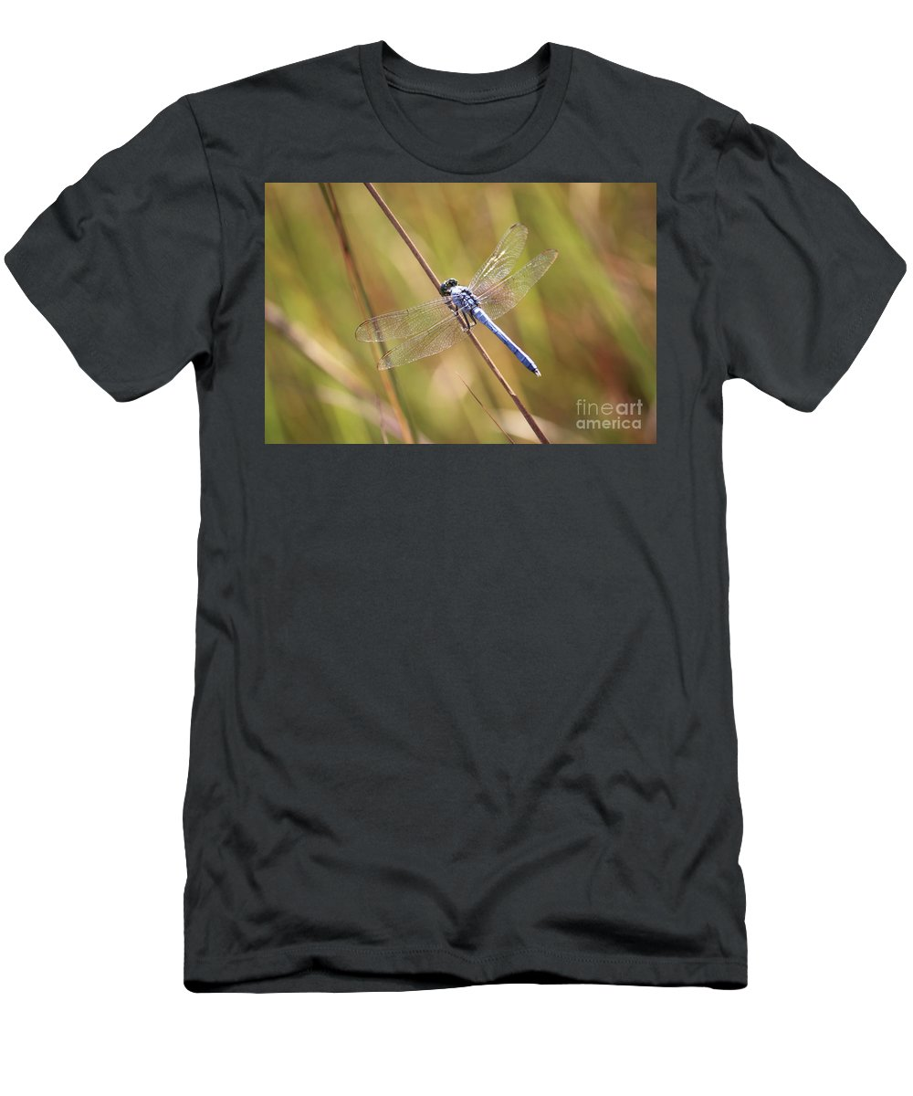 Dragonfly Men's T-Shirt (Athletic Fit) featuring the photograph Blue Dragonfly Against Green Grass by Carol Groenen