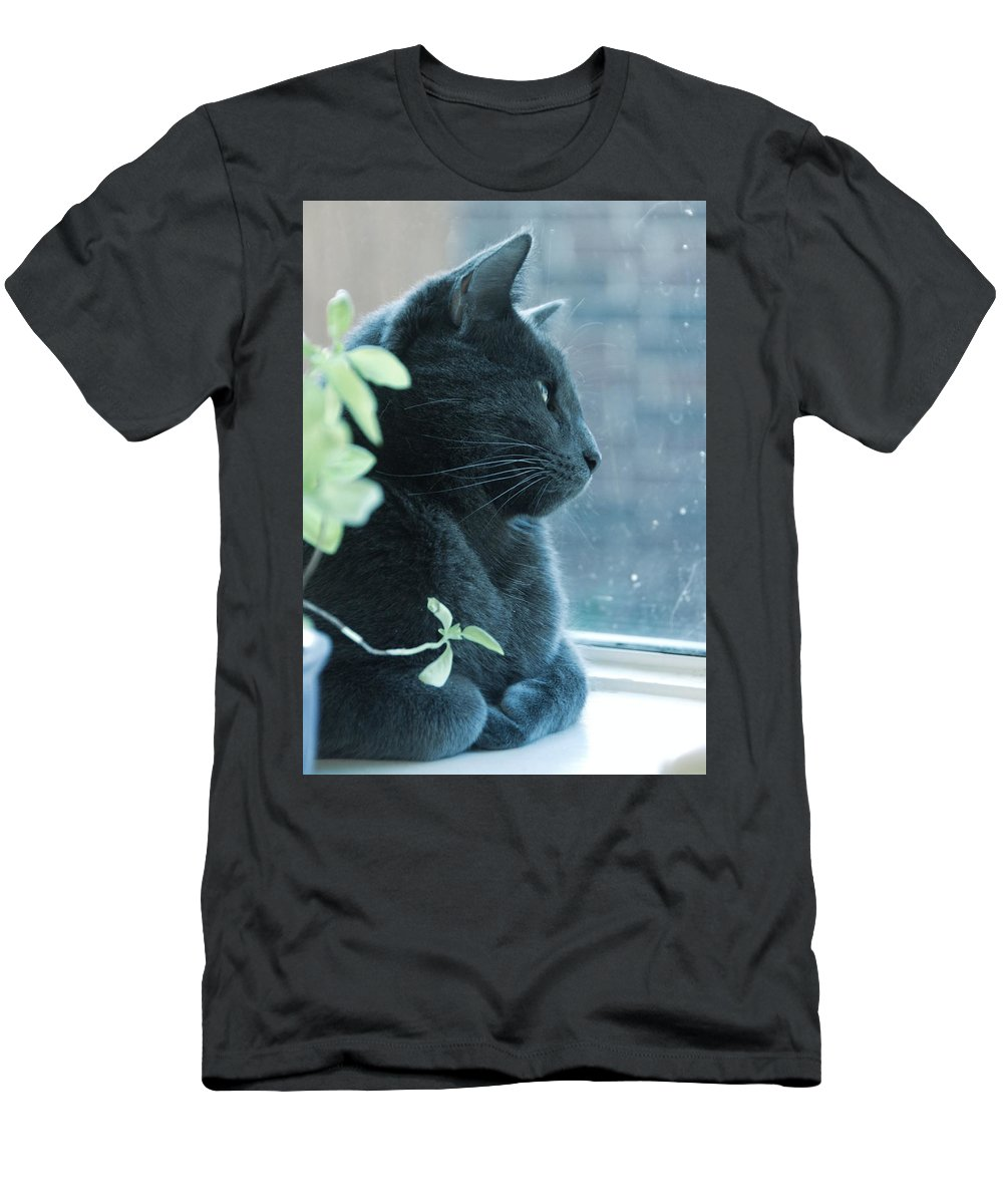 Cat Men's T-Shirt (Athletic Fit) featuring the photograph Blue Grey Contemplating Cat by Katherine Nutt