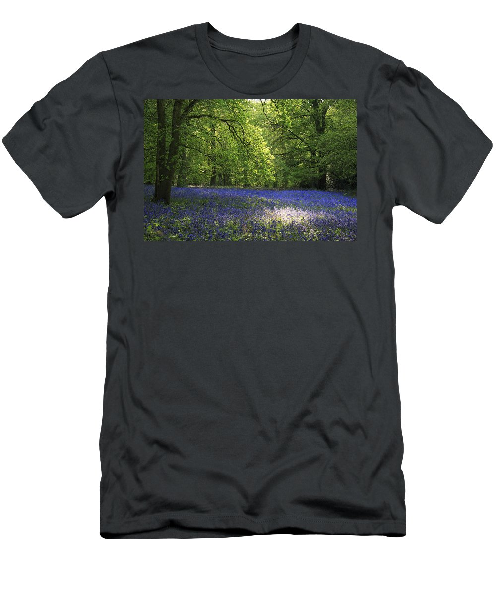 Bluebells Men's T-Shirt (Athletic Fit) featuring the photograph Bluebells by Phil Crean