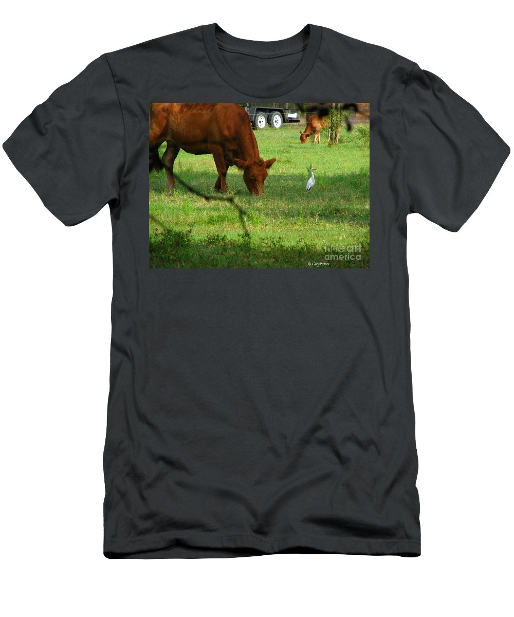 Cows Men's T-Shirt (Athletic Fit) featuring the photograph Bodyguard by Greg Patzer