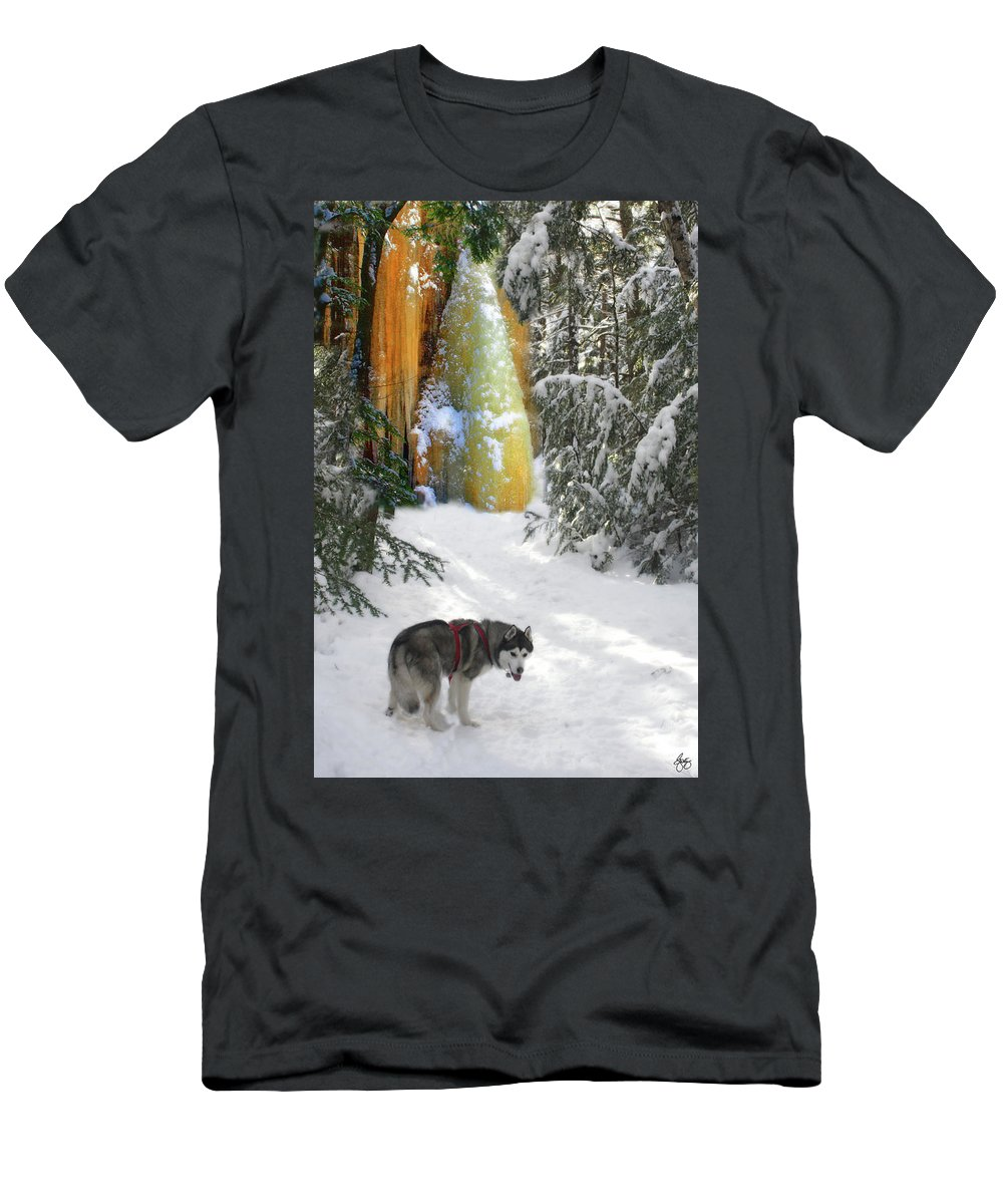 Gold Men's T-Shirt (Athletic Fit) featuring the photograph Boofies Great Adventure by Wayne King