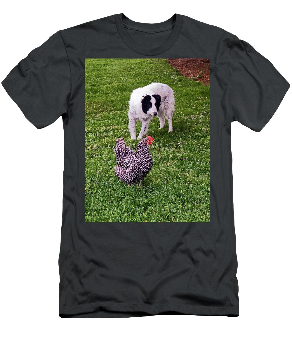 Border Collie Dog Herding Chicken Men's T-Shirt (Athletic Fit) featuring the photograph Border Collie Herding Chicken by Sally Weigand