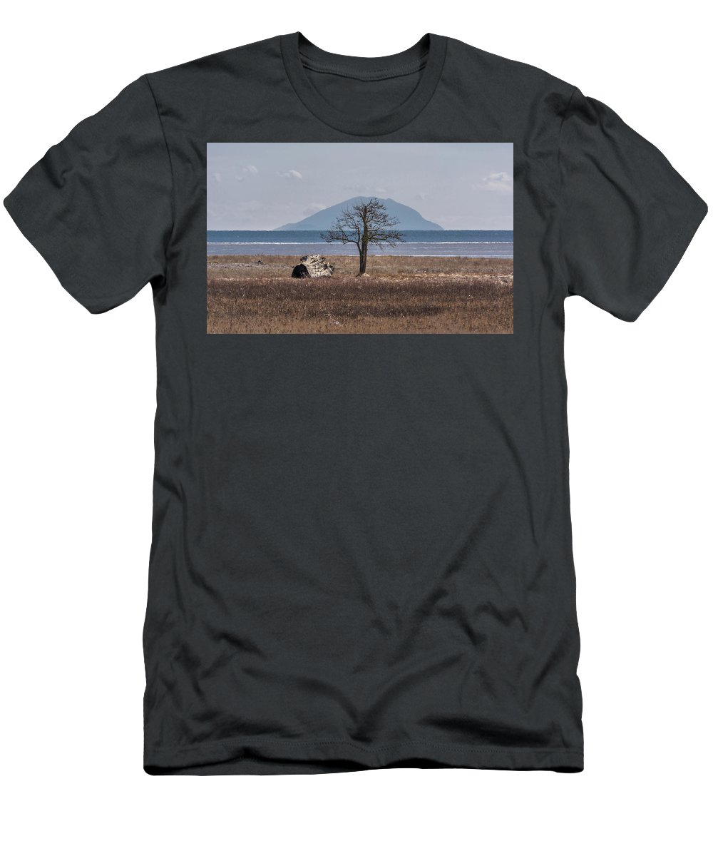 Bay Men's T-Shirt (Athletic Fit) featuring the photograph Boundary Bay Tree by Marv Vandehey
