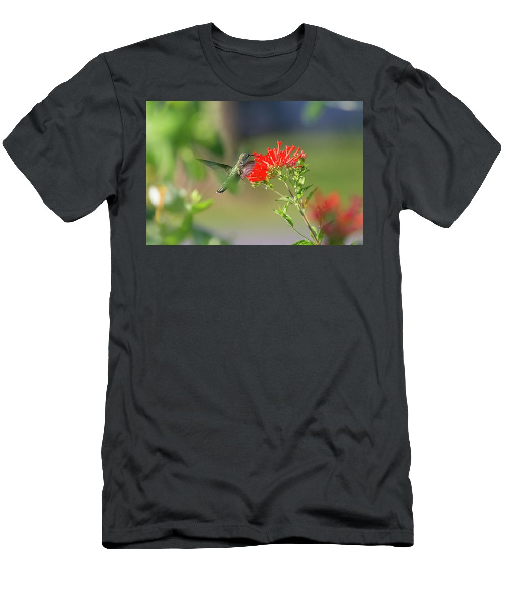 Hummingbird Men's T-Shirt (Athletic Fit) featuring the photograph Bouvardia by Cindi Poole