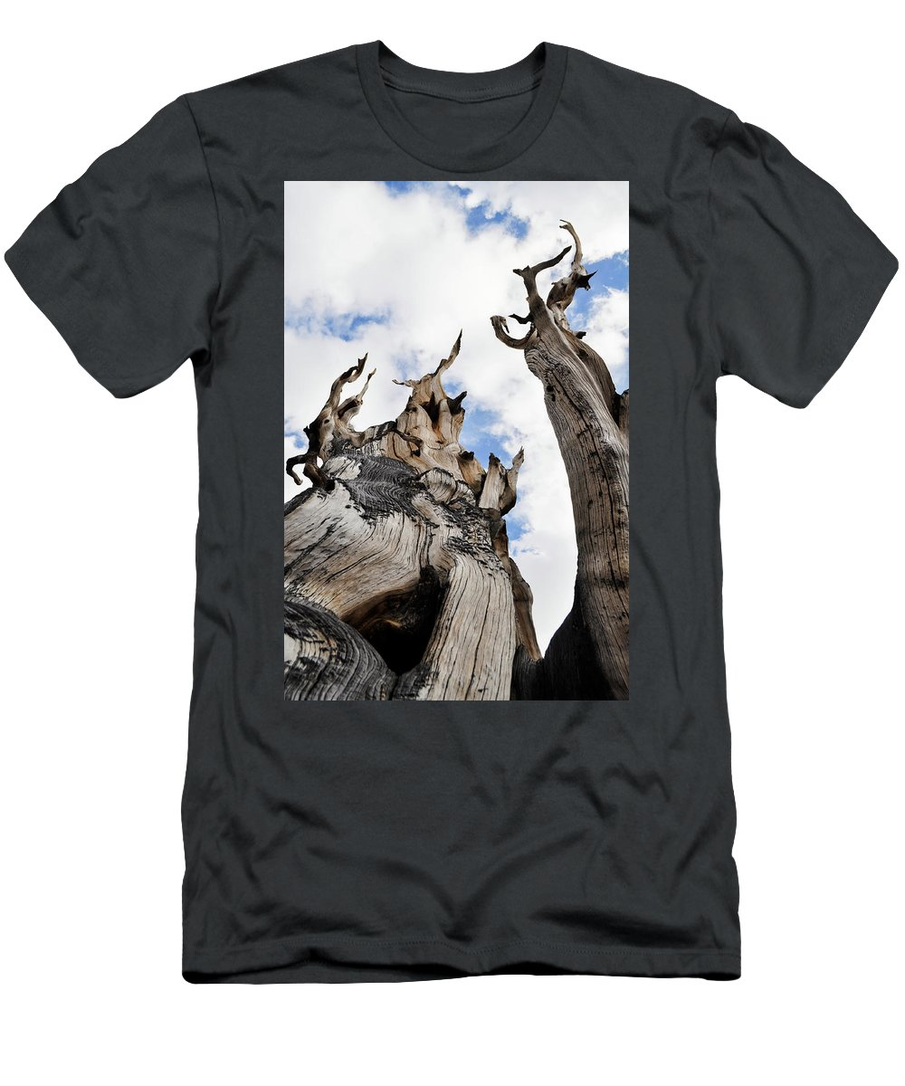 Great Basin National Park Men's T-Shirt (Athletic Fit) featuring the photograph Bristlecone Pine Great Basin by Kyle Hanson