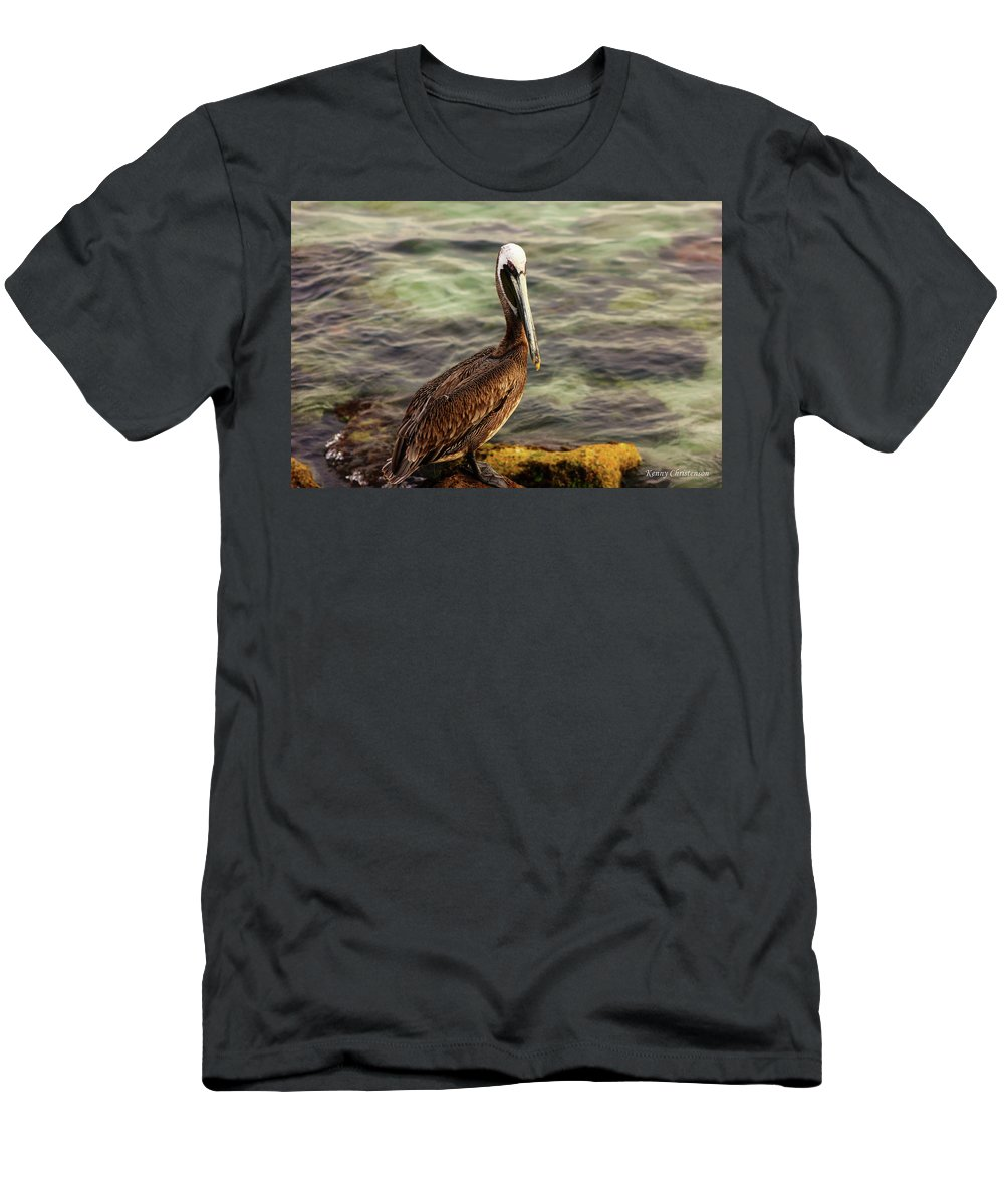Brown Pelican Men's T-Shirt (Athletic Fit) featuring the photograph Brown Pelican by Kenneth Christenson