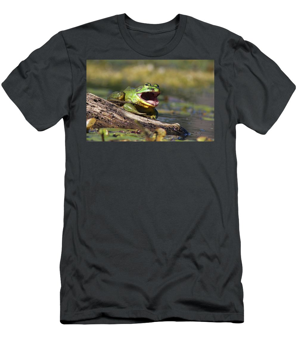 Amphibian Men's T-Shirt (Athletic Fit) featuring the photograph Bull Frog by Mircea Costina Photography