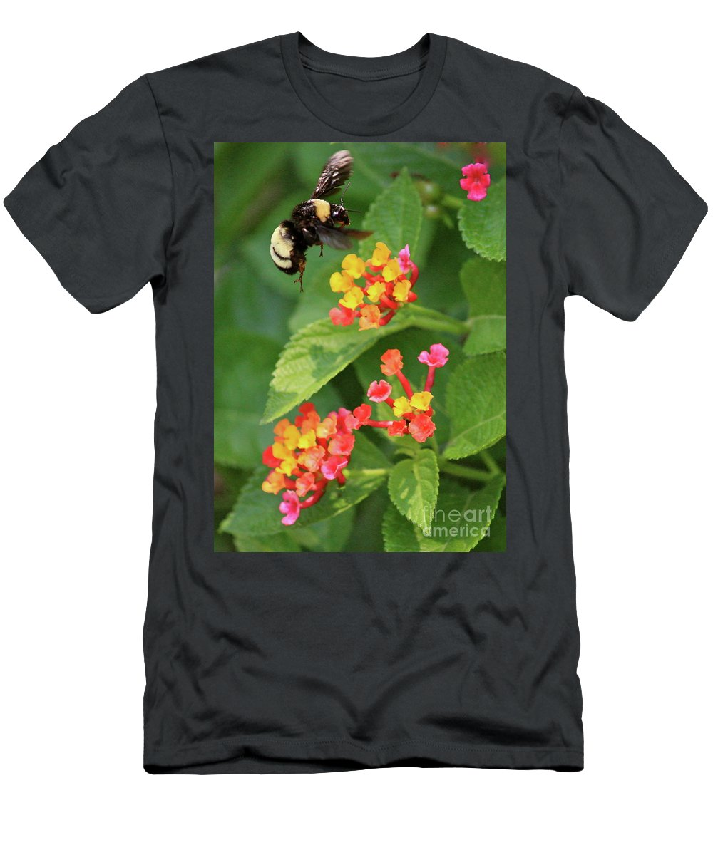 Bee Men's T-Shirt (Athletic Fit) featuring the photograph Bumble Bee In Flight by Carol Groenen