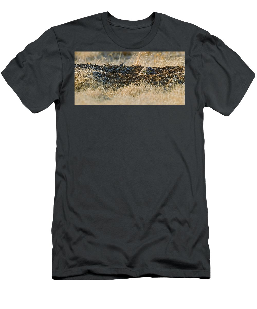 Burrowing Owl Men's T-Shirt (Athletic Fit) featuring the photograph Burrowing Owl Peaking Outta The Hole by Gary Langley