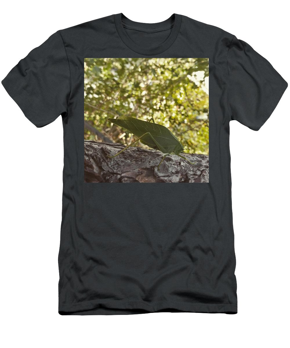 Insect Men's T-Shirt (Athletic Fit) featuring the photograph Bush Cricket by Jesse Acosta