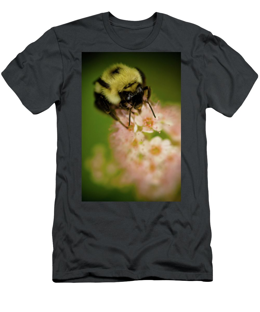 Bee Men's T-Shirt (Athletic Fit) featuring the photograph Busy Bee by Sebastian Musial