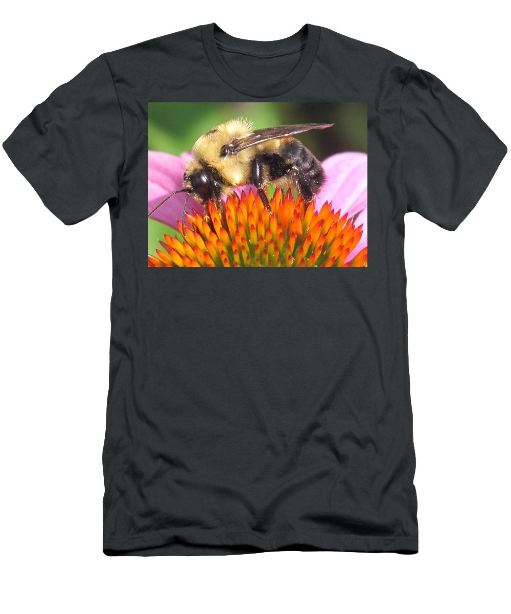 Bee Men's T-Shirt (Athletic Fit) featuring the photograph Busy by Ian MacDonald