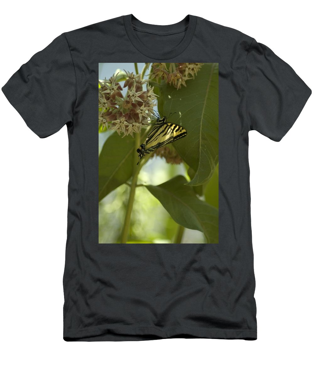 Flower Men's T-Shirt (Athletic Fit) featuring the photograph Butterfly 1 by Sara Stevenson