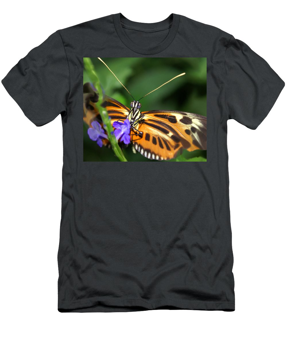 Butterfly Men's T-Shirt (Athletic Fit) featuring the photograph Butterfly 2 Eucides Isabella by Heather Coen
