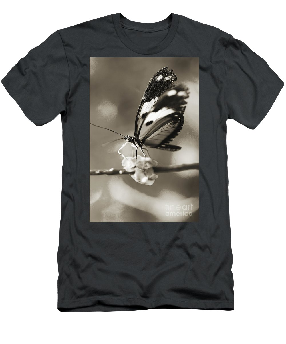 Afternoon Men's T-Shirt (Athletic Fit) featuring the photograph Butterfly Close-up by Tomas del Amo - Printscapes