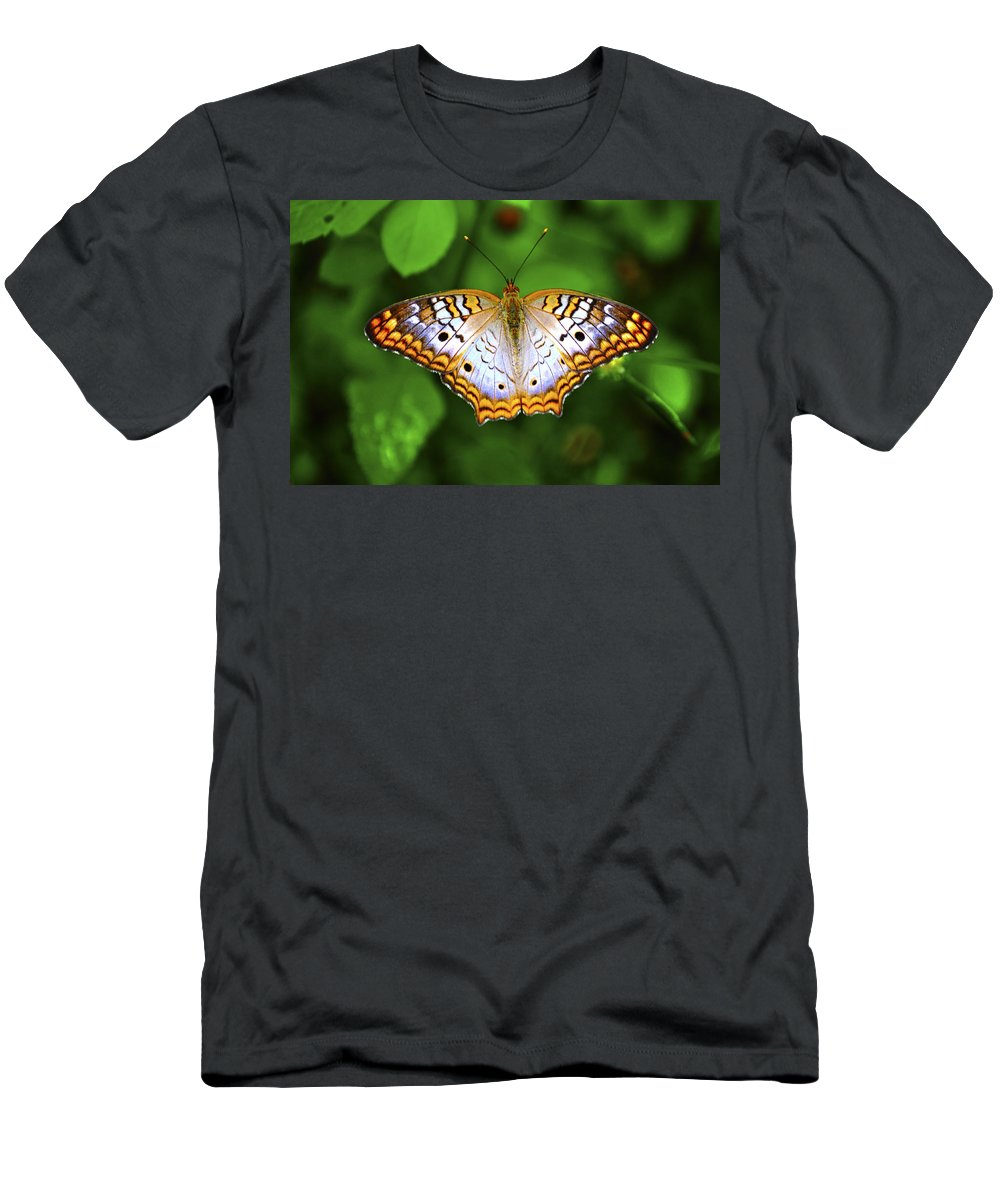 Butterfly Men's T-Shirt (Athletic Fit) featuring the photograph Butterfly Closeup by Randy Aveille