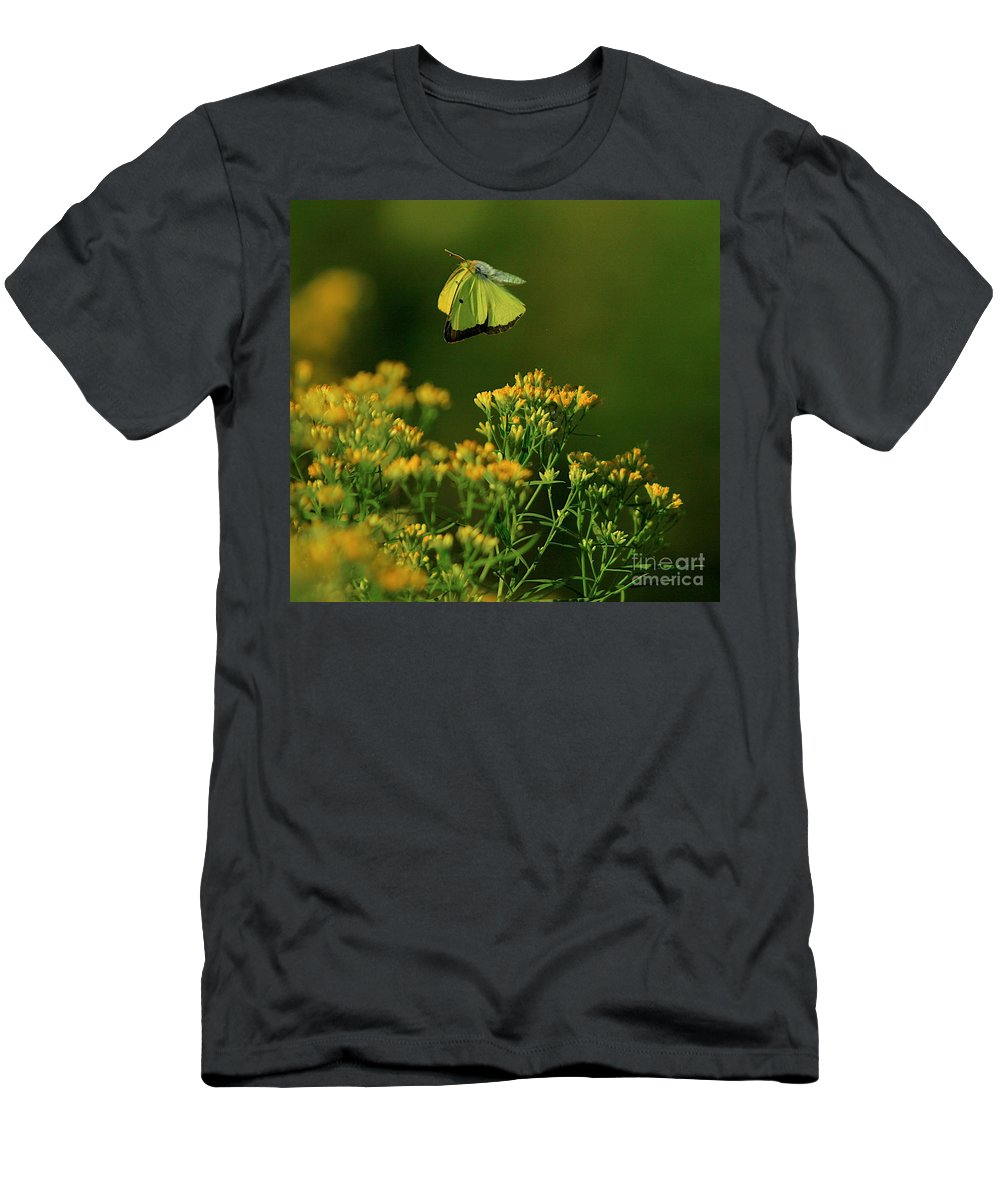 Related Tags: Men's T-Shirt (Athletic Fit) featuring the photograph Butterfly-ing by Robert Pearson