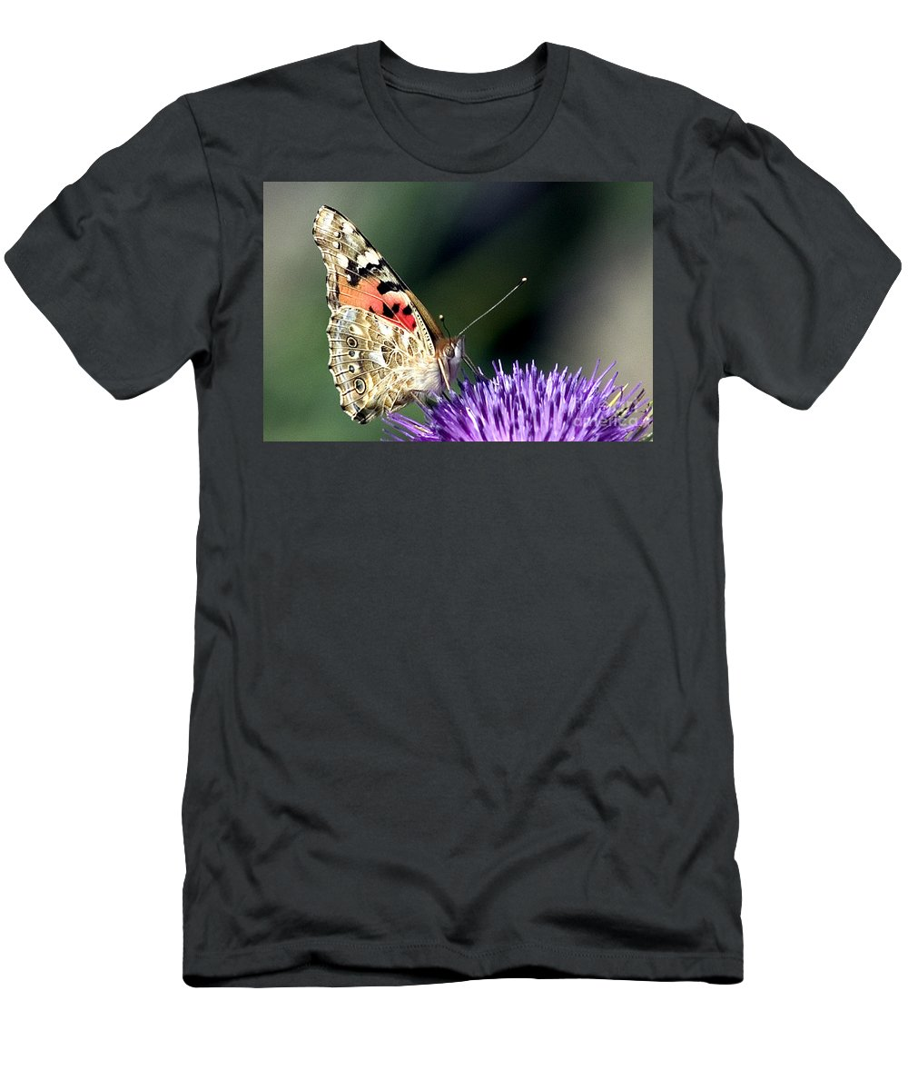 Butterfly Men's T-Shirt (Athletic Fit) featuring the photograph butterfly on a Silybum marianum I by Nahum Budin