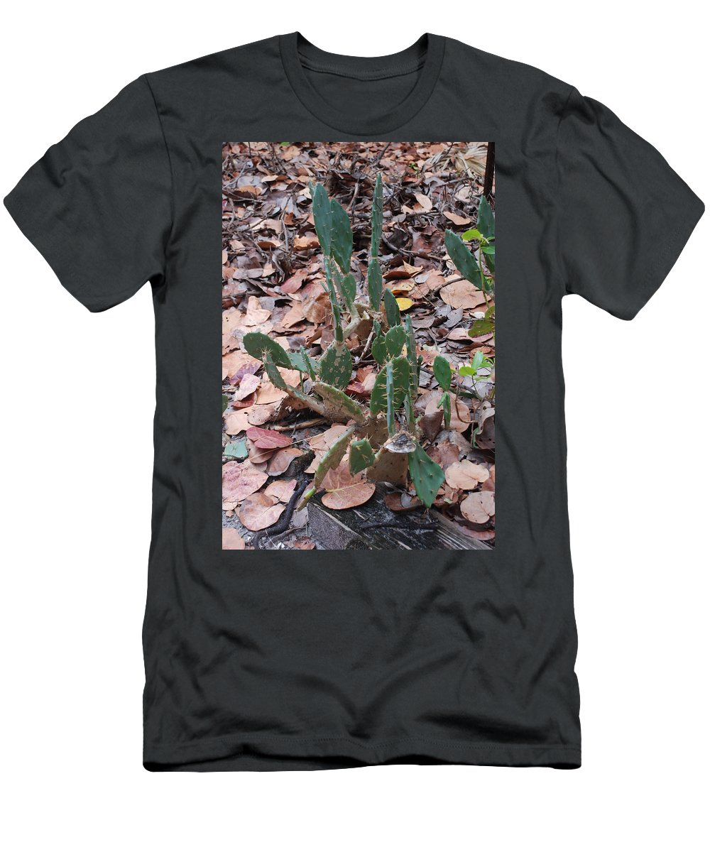 Cacti Men's T-Shirt (Athletic Fit) featuring the photograph Cacti And Leaves by Rob Hans
