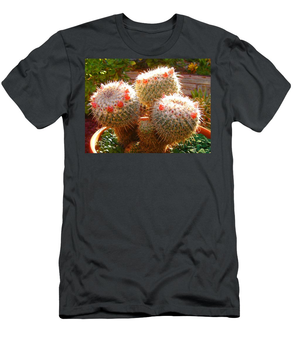 Landscape Men's T-Shirt (Athletic Fit) featuring the photograph Cactus Buds by Amy Vangsgard