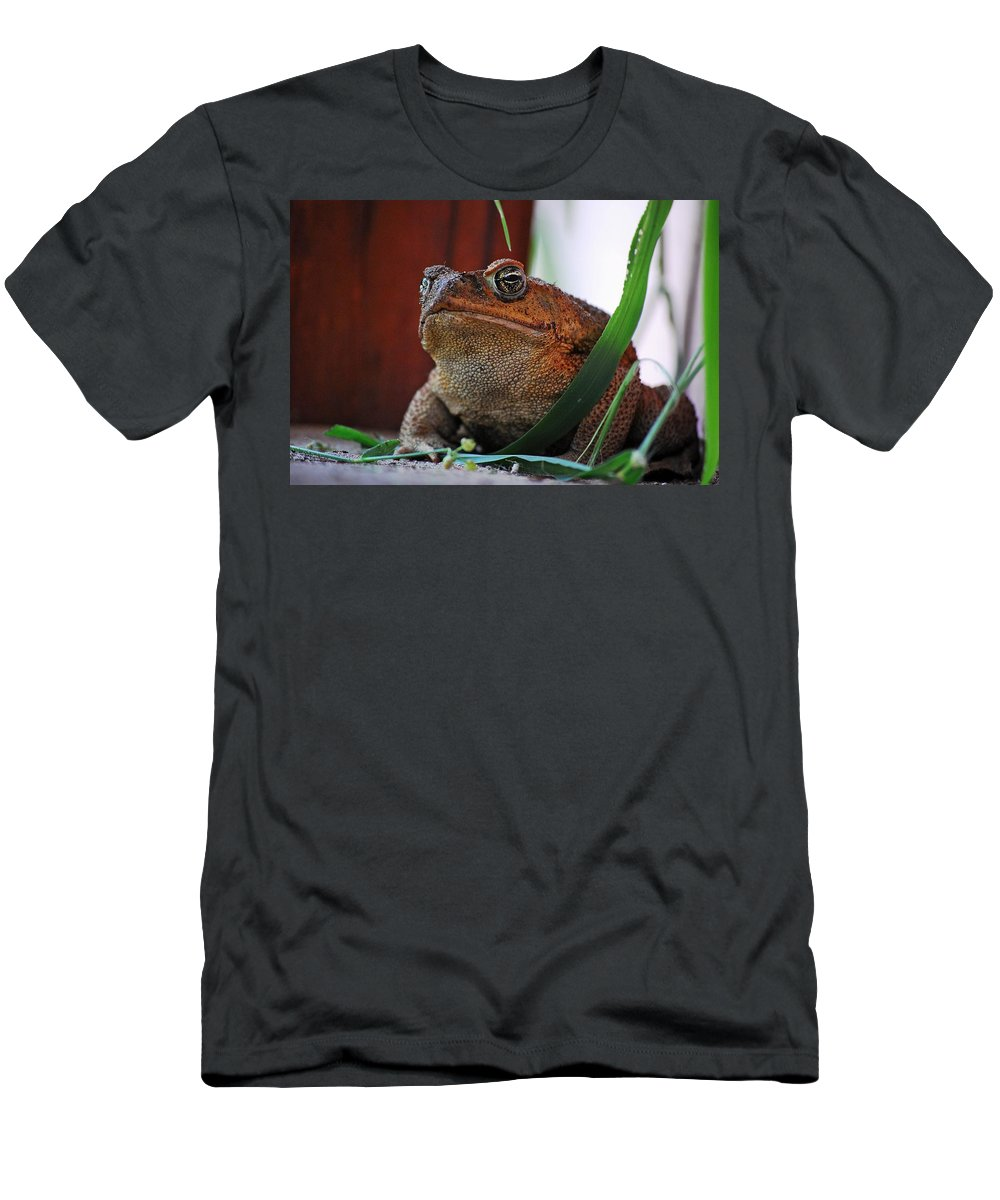 Cain Toad Men's T-Shirt (Athletic Fit) featuring the photograph Cain Toad by Robert Meanor