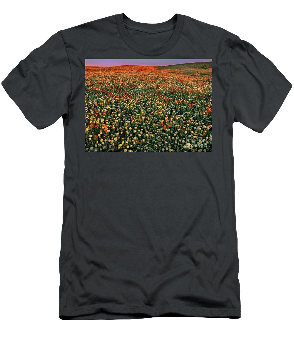 California Poppies Men's T-Shirt (Athletic Fit) featuring the photograph California Poppies At Dawn Lancaster California by Dave Welling