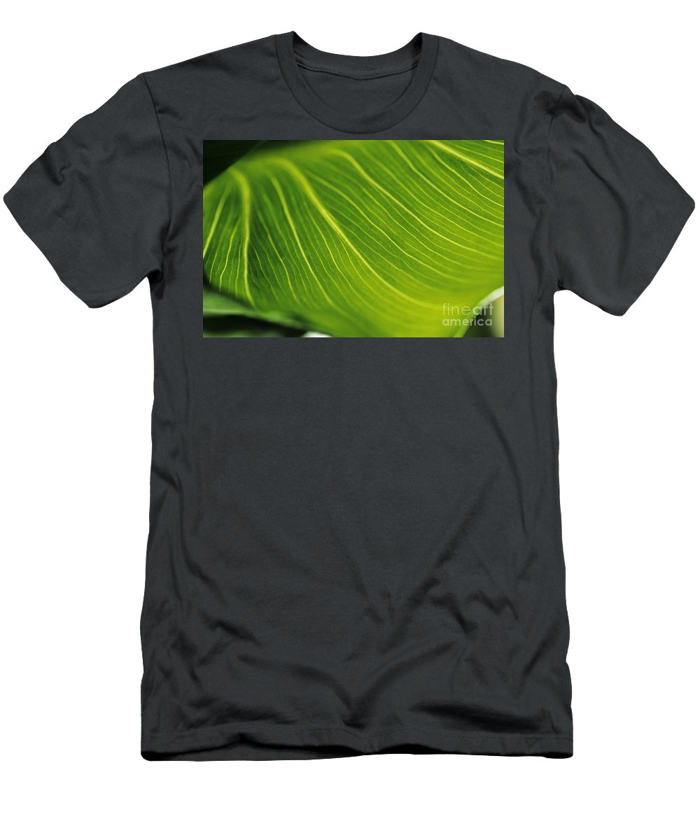 82-csb0004 Men's T-Shirt (Athletic Fit) featuring the photograph Calla Lily Leaf by Larry Dale Gordon - Printscapes
