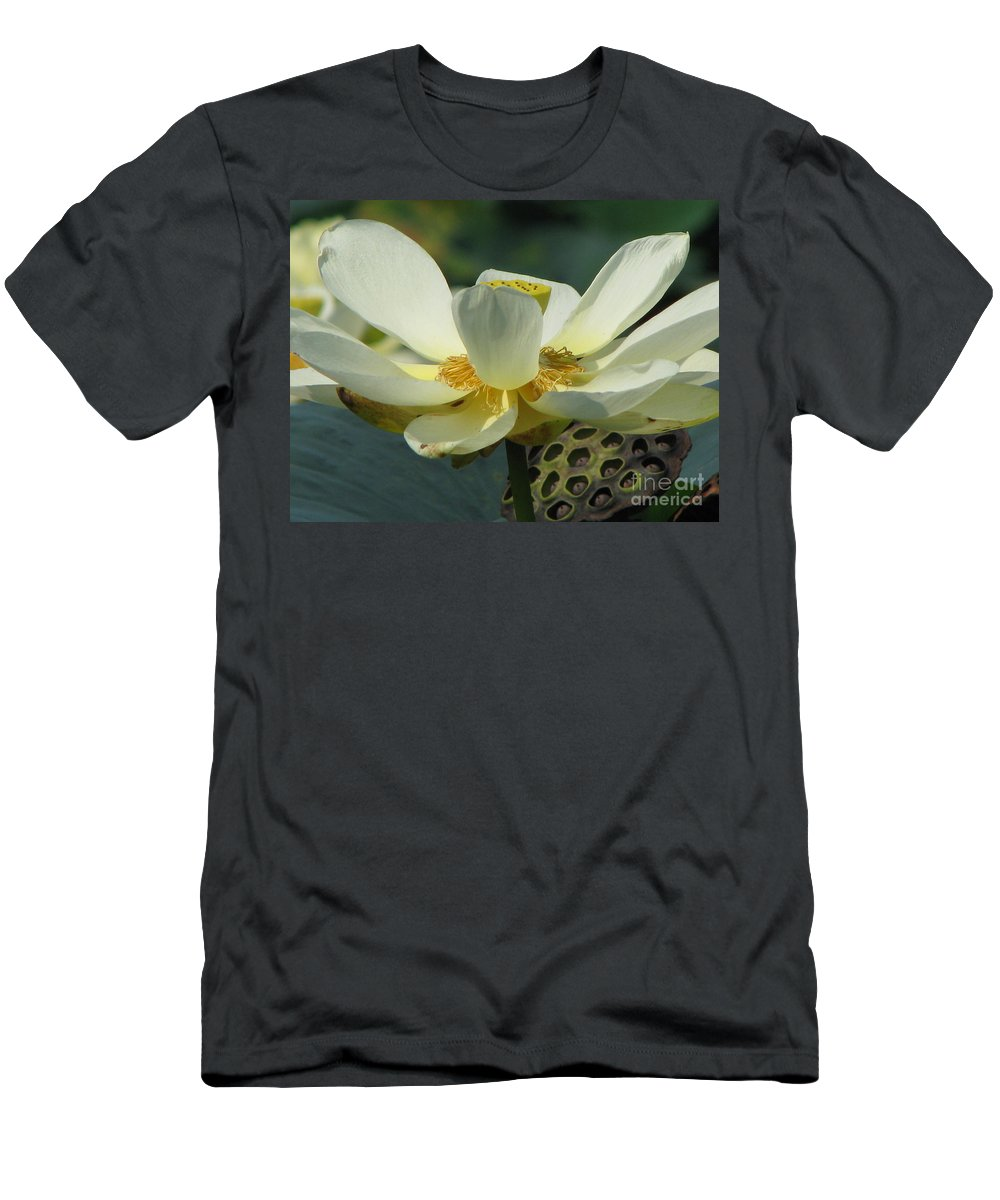Lotus Men's T-Shirt (Athletic Fit) featuring the photograph Calm by Amanda Barcon